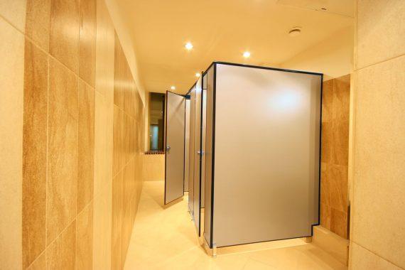 Надежные конструкции – это сантехнические перегородки